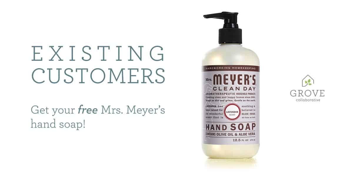 Bathroom Cleaning Essentials From Grove Collaborative + Mrs. Meyers