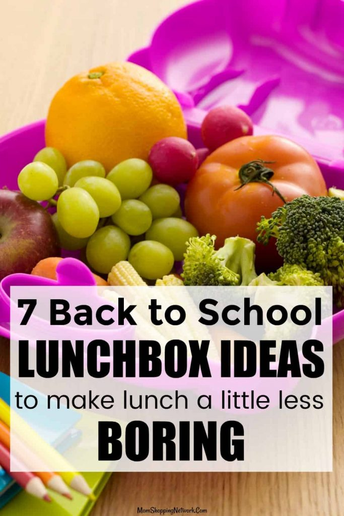 lunchbox ideas including fruits and vegetables